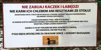 Mieszkańcy Ząbek chętnie dokarmiają ptaki